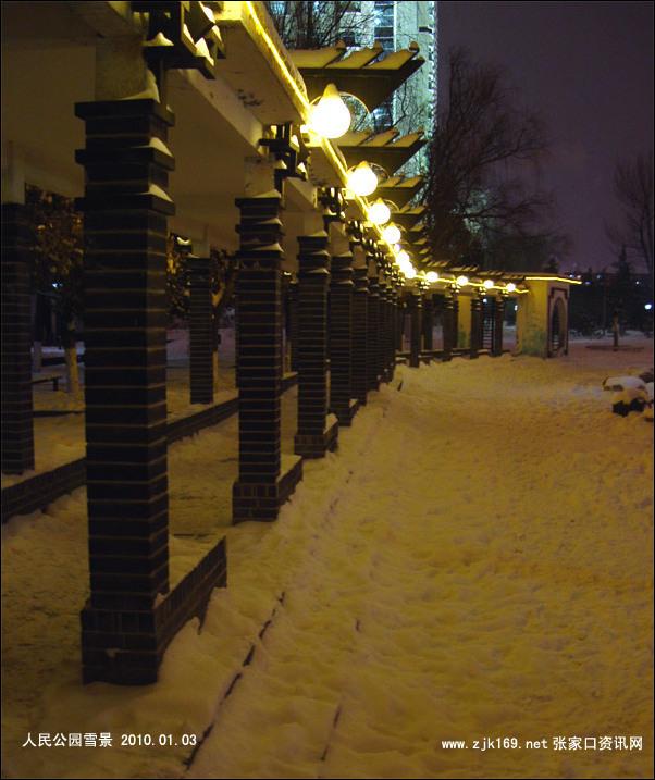 張家口的大雪圖片 2010年張家口第一場大雪組圖