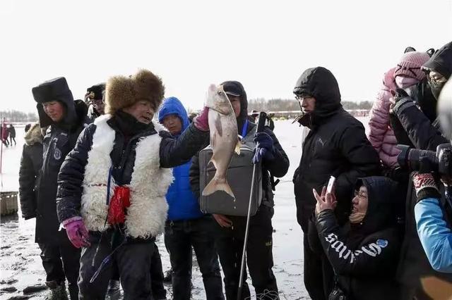 raybet官方网站这个春节可以来天鹅湖玩点新鲜的了
